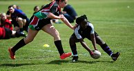 Warriors Host Annual Girls Rugby Shield